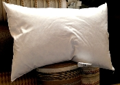 "PF1624 - 16"" x 24"" Hypo-Allergenic Feathered Down Pillow Insert"