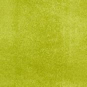 Montana Suede - Celery