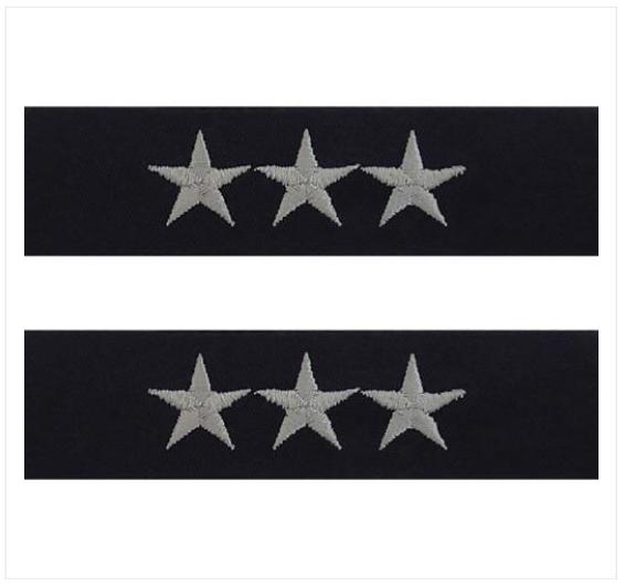 Lieutenant General(3-STAR)