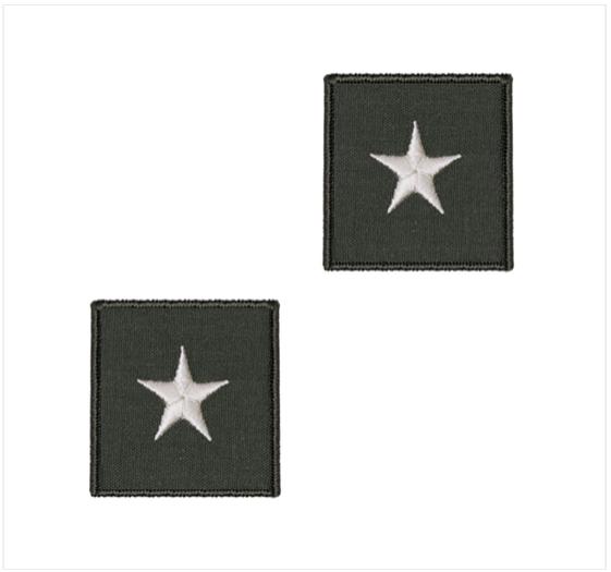 Brigadier General (1-STAR)