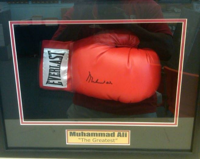 Boxing Glove shadowbox