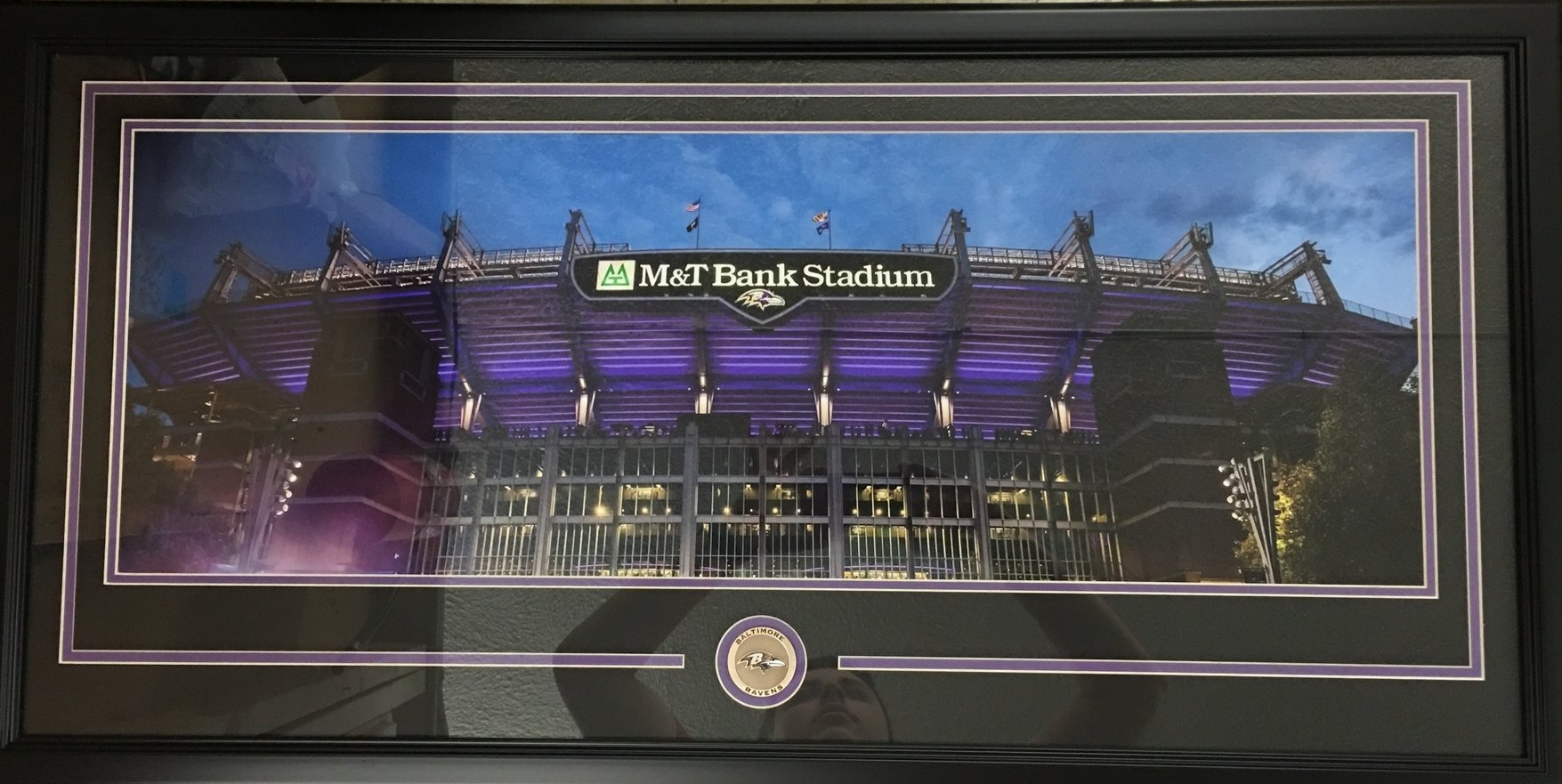 M&T Bank Stadium Panorama
