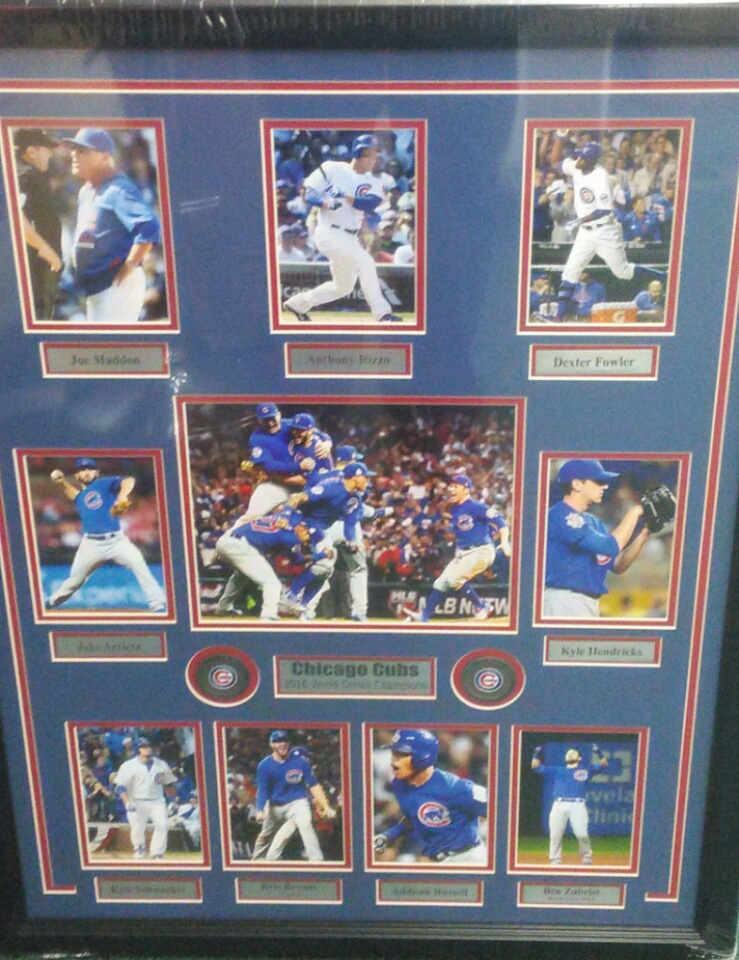 CHICAGO CUBS WORLD SERIES COLLAGE