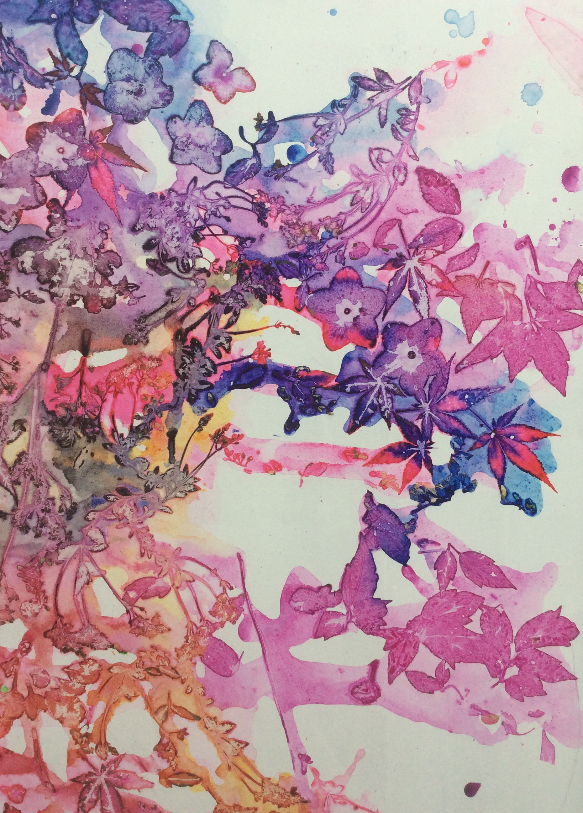 David Booth | Floral Blush