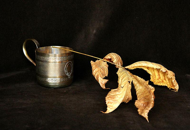 Still Life 1, Dry Leaf