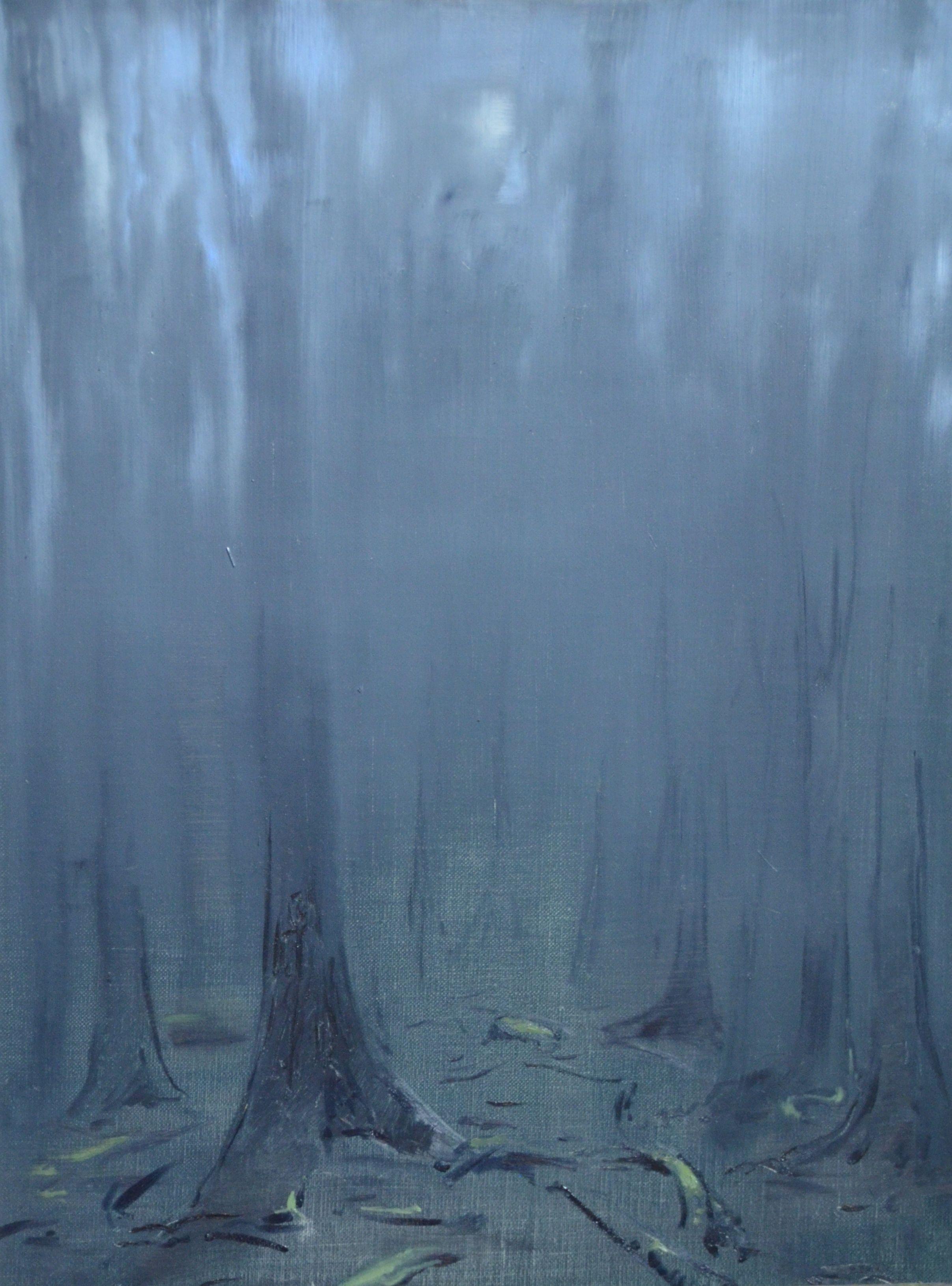 Evening Mist in the Jura  (2014), Stefan John Orlowski