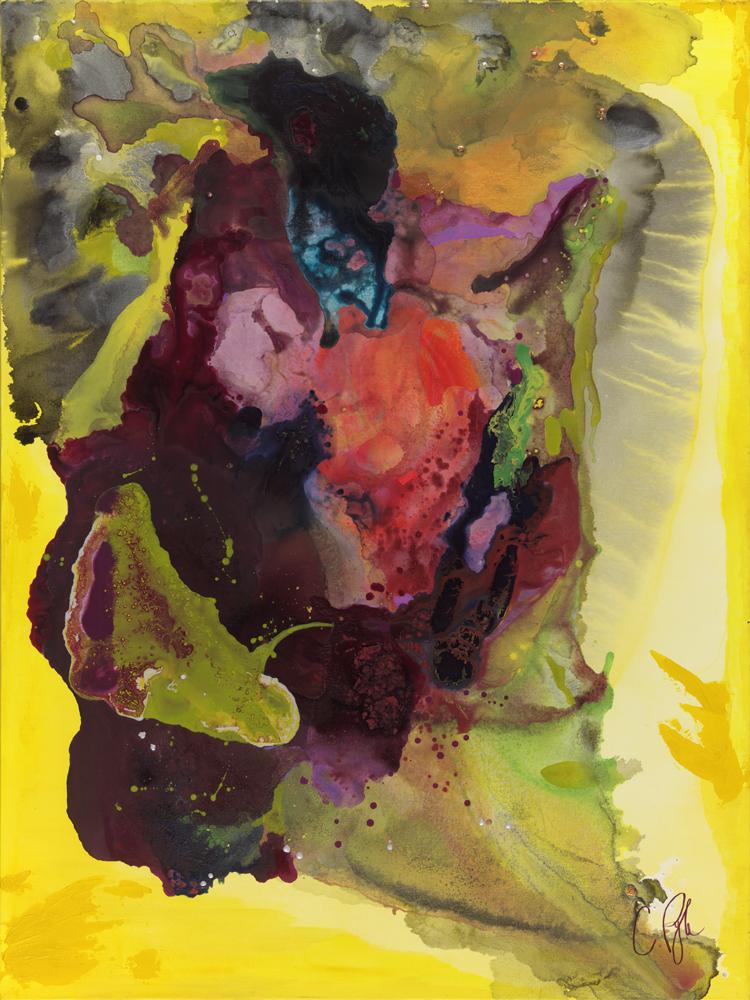 Cornucopia of Color