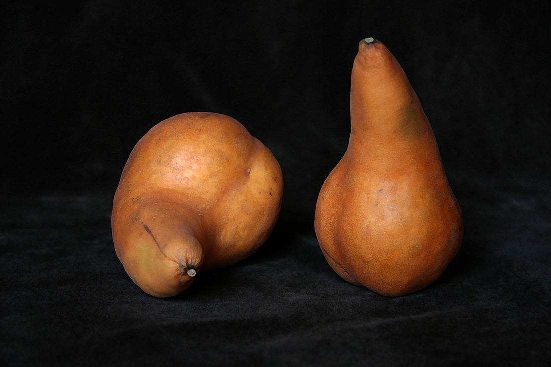 Still Life 1, Pear Bodies