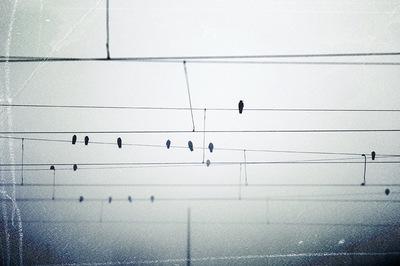 Raluca Caragea | Song For Winter
