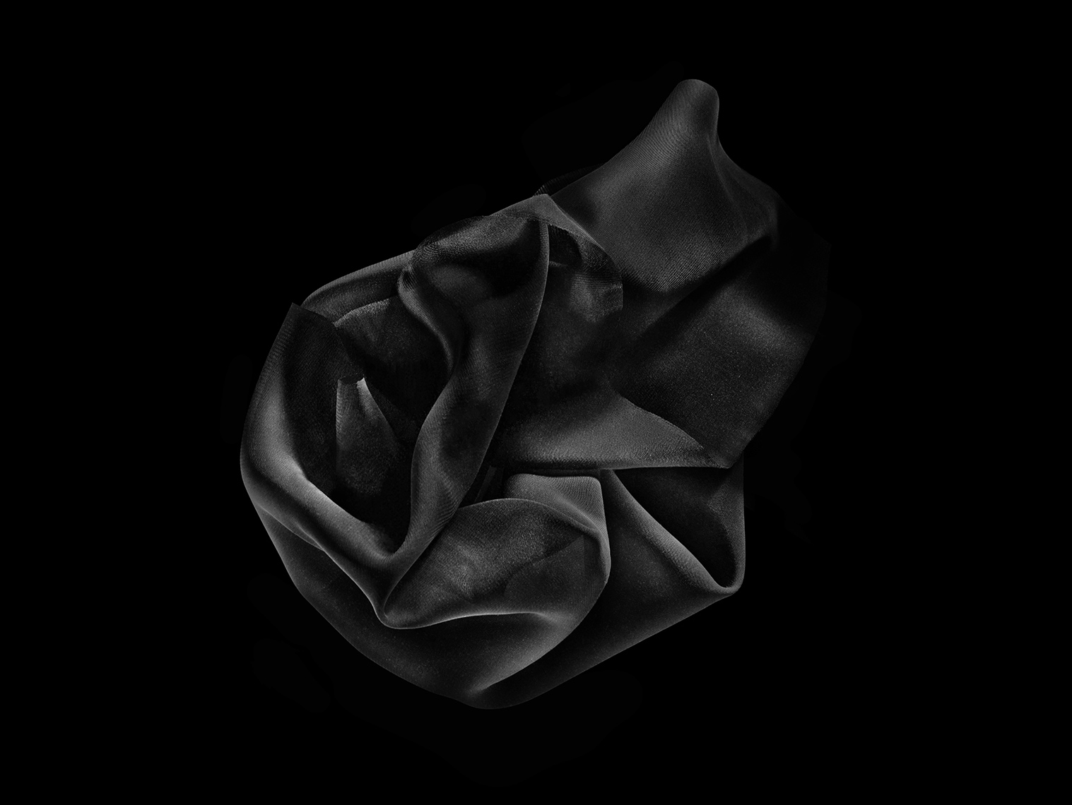 Flowers | Black