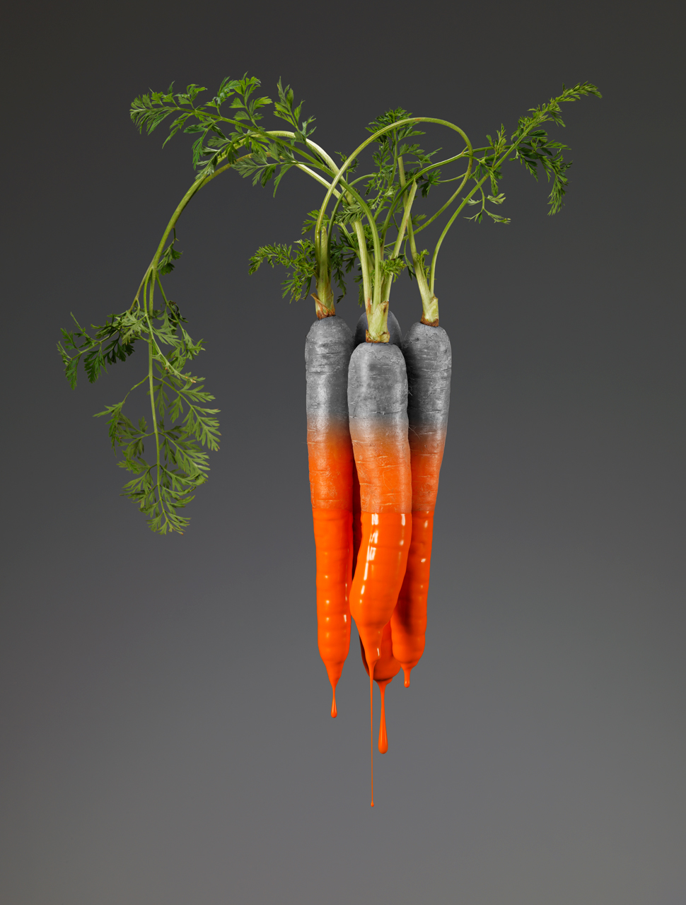 COLORS  | Carrot