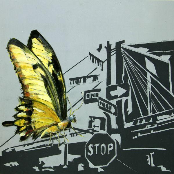 """THE ULTIMATE FLY"" by Lara Padilla"