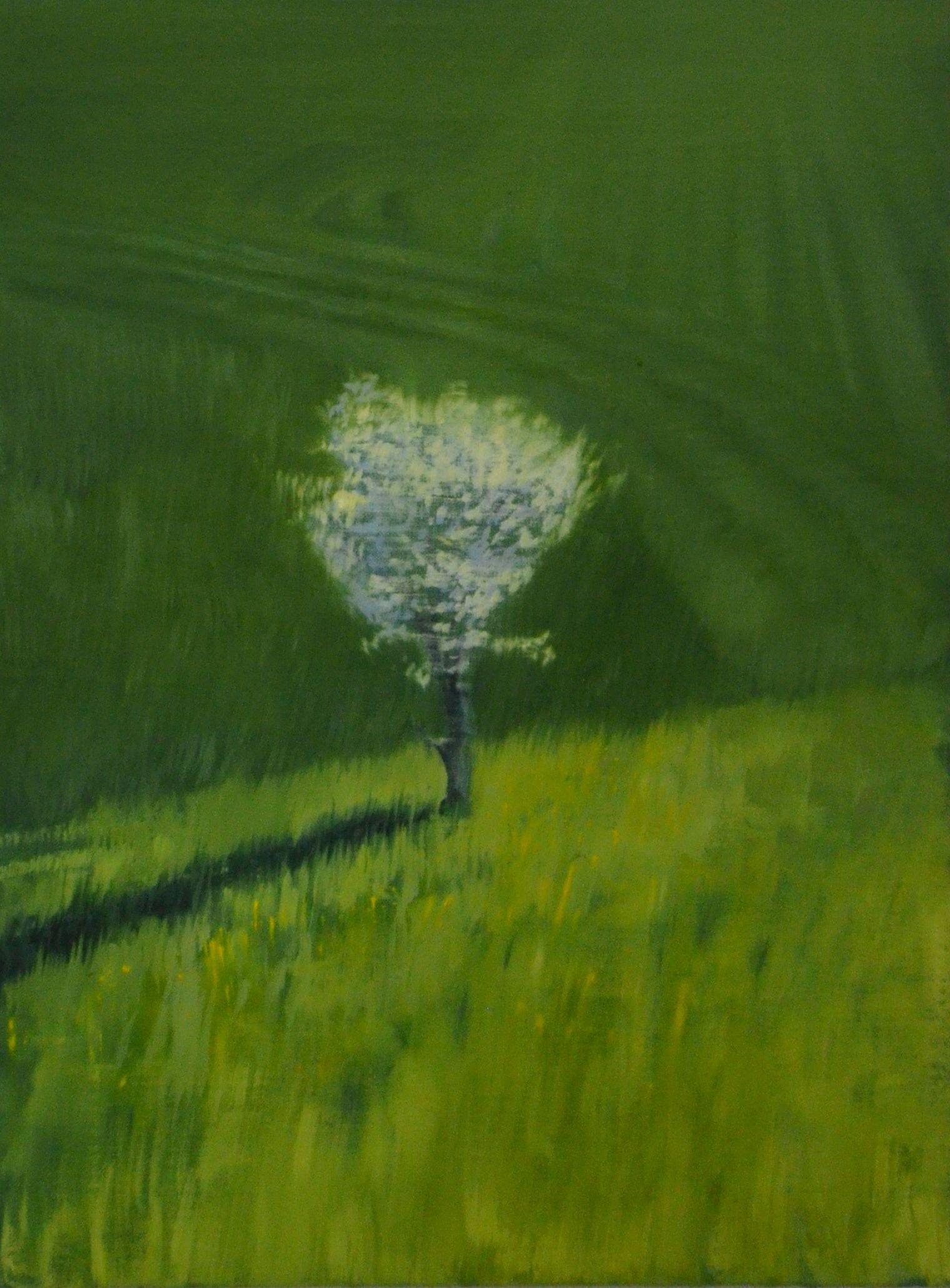 Three days of blossom,  (2014), Stefan John Orlowski