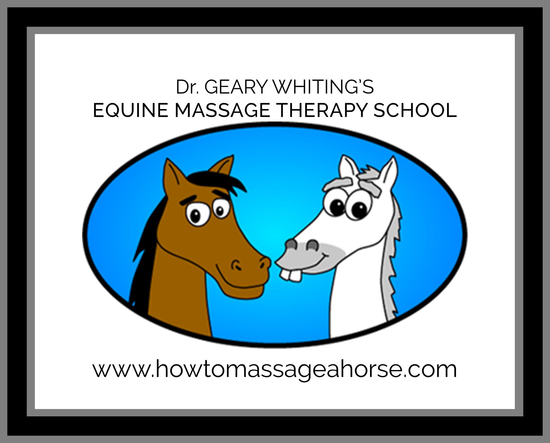 Horse Massage Certification School