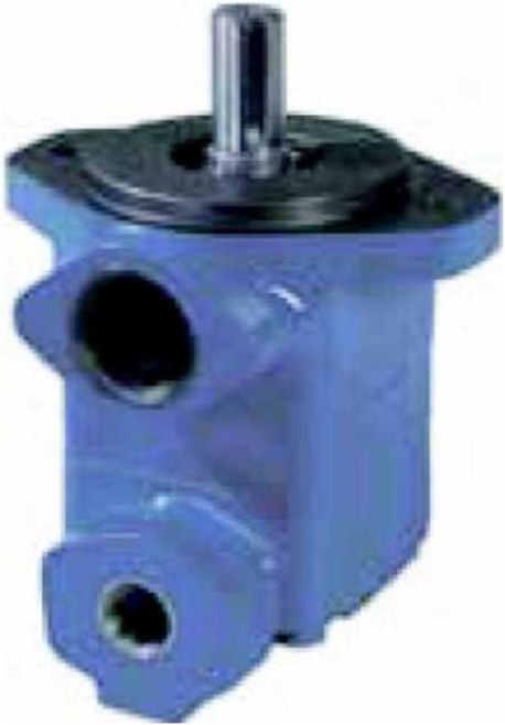V10 vane pump`