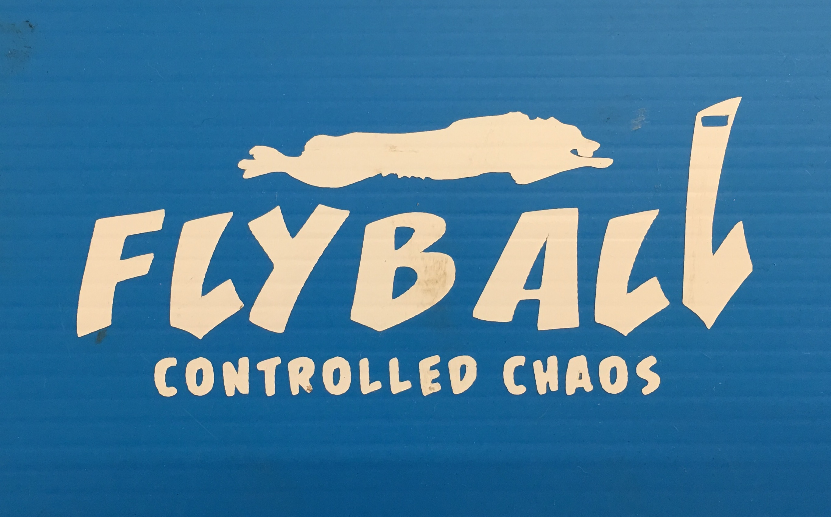 Flyball Controlled Chaos