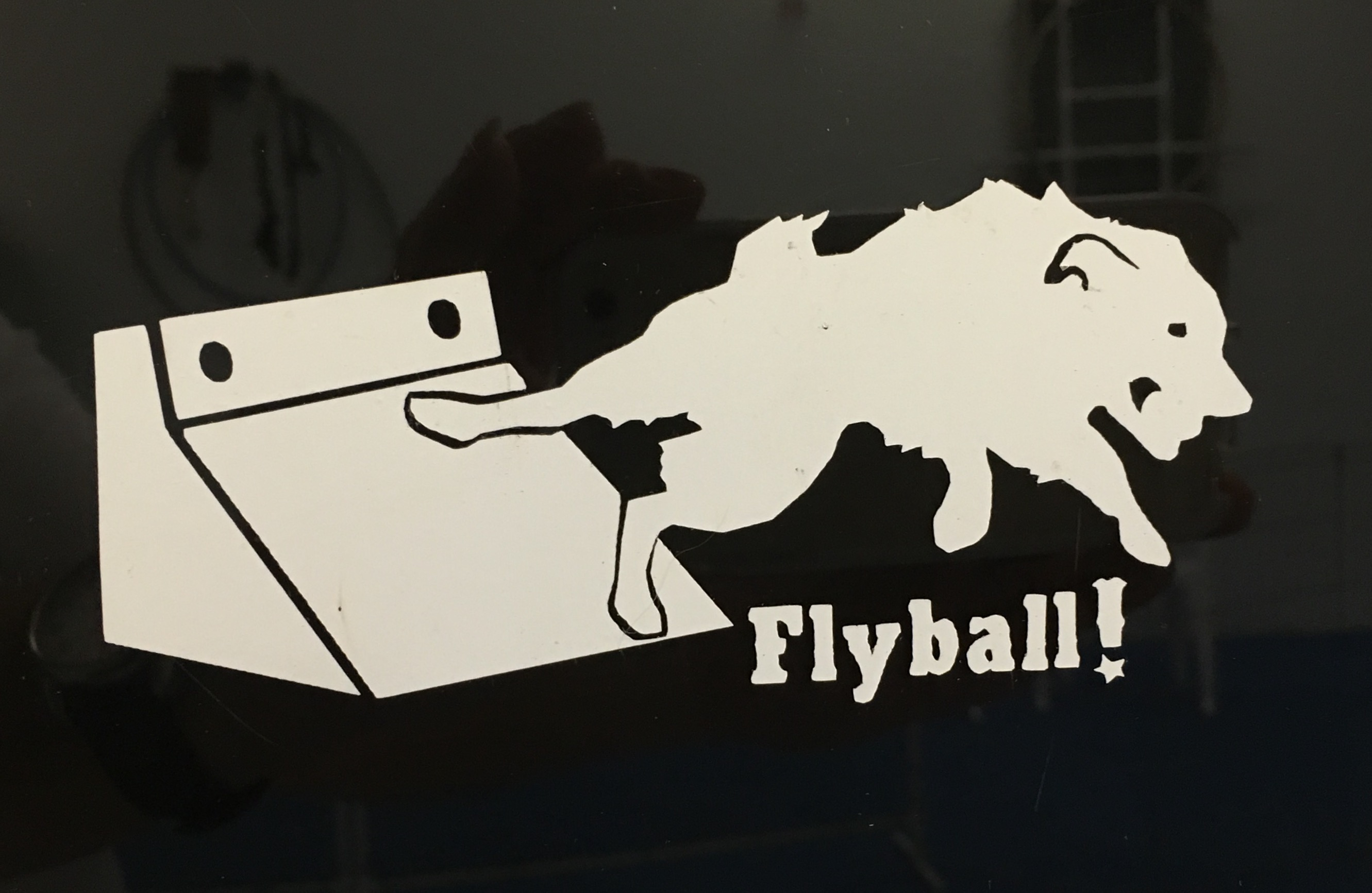 Flyball Push Decal