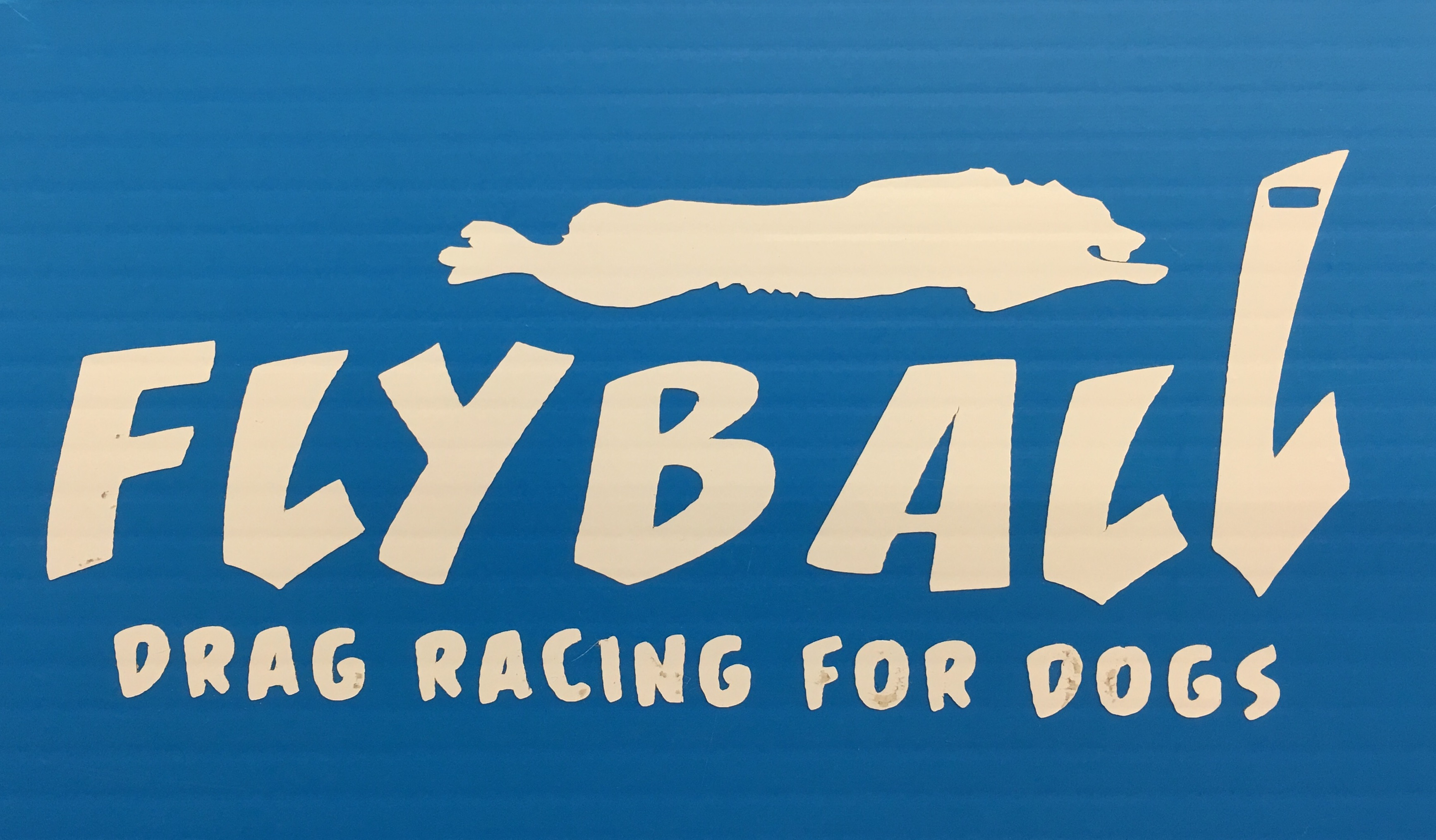 Flyball Drag Racing Decal
