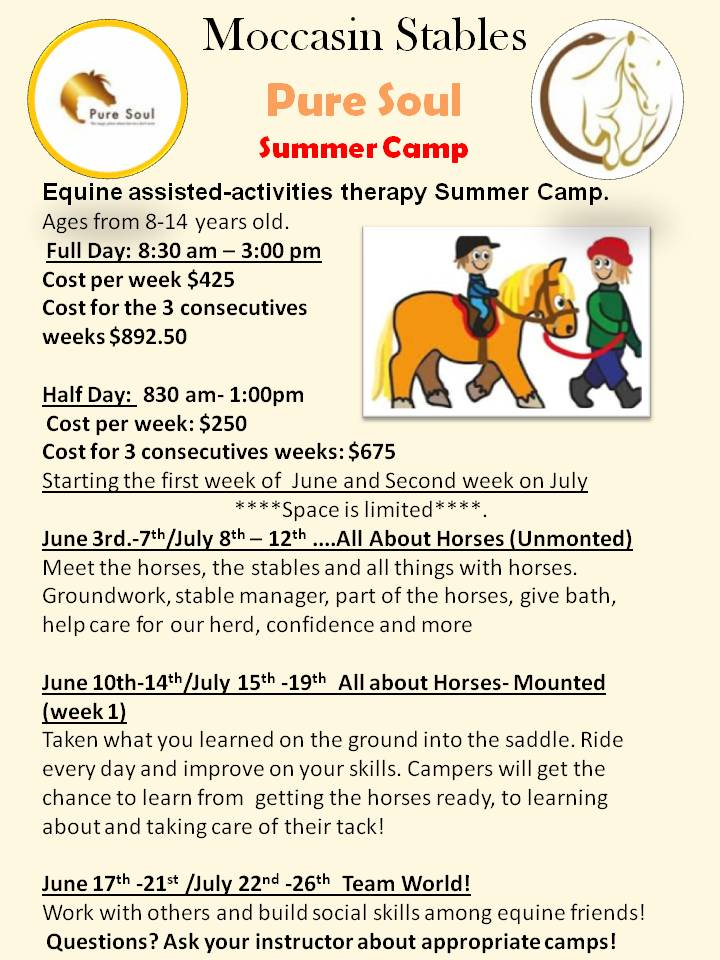 Equine therapy Summer Camp