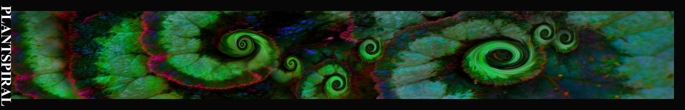 PlantSpiral IEU 8 x 60