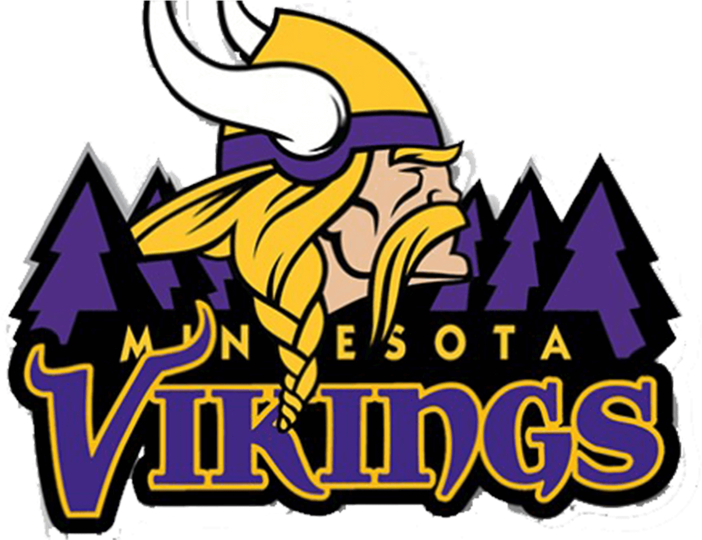 $85 Ticket for the MN Vikings/Detroit Lions Oct 14th Game