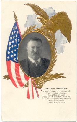 T Roosevelt Postcard