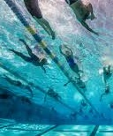 Masters Swimming (NON-YMCA member) Monthly