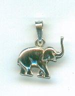 Silver Charm, Elephant