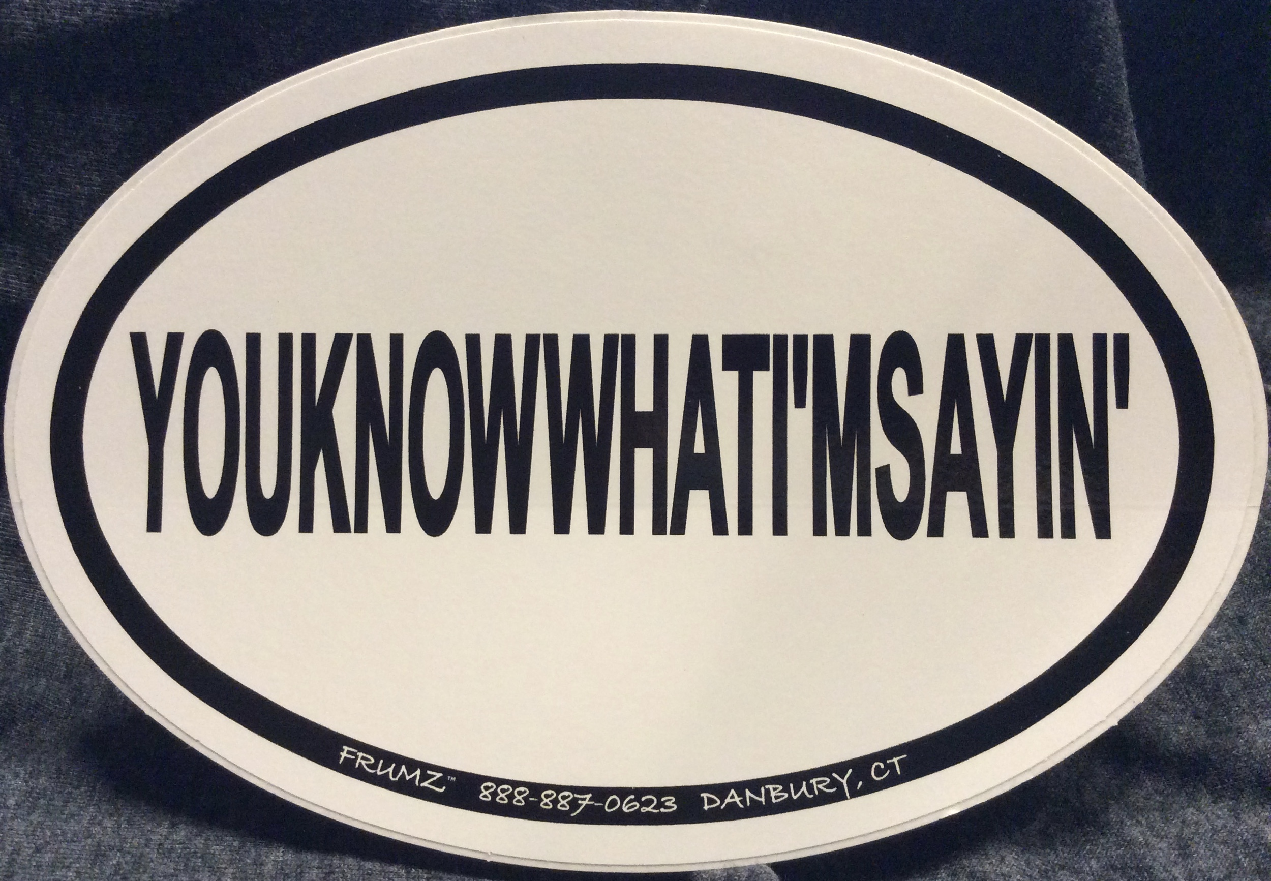 YOUKNOWWHATI'MSAYIN oval sticker decal