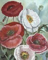 Shirley Poppies/Original Oil    $375