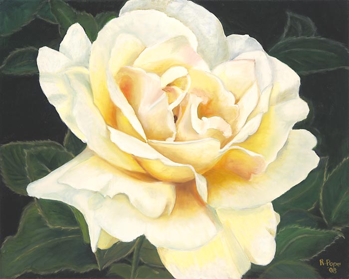 Yellow Rose/Giclee  8x10     $40