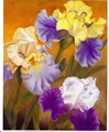Irises/Original Oil        $375