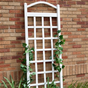 6 Ft White Vinyl Garden Trellis with Arch Top with Ground Mount Anchors, DTCVAW47513 :  With its classically arched top and wide, open lattice design, this 6 Ft White Vinyl Garden Trellis with Arch Top with Ground Mount Anchors is a natural way to dress your outside wall in nature's finery. It is crafted of maintenance-free PVC vinyl that is a cinch to clean with your garden hose and it comes complete with ground-mount anchors so set-up is a breeze. Simply plant your favorite climbing flowers at the base and let nature take over. Your flowers and vines will climb up and bloom with abandon. This trellis could also be used as a natural and beautiful screen between you and your neighbors.