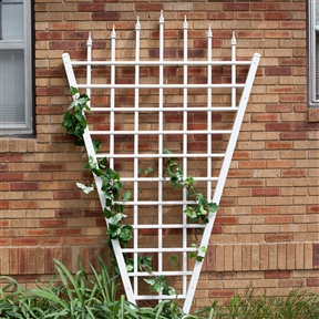 7.75 Ft Fan Shaped Garden Trellis with Pointed Finals in White Vinyl , DTWV989153 :  The 7.75 Ft Fan Shaped Garden Trellis with Pointed Finals in White Vinyl gives support to climbing flowers and vines, while the pointed finials add a classic touch. Climbing flowers and vines will also create just the right amount of privacy to your walkway or garden. This trellis is constructed of high-grade PVC vinyl that carries a 20-year warranty. It is durable and maintenance-free, too. UV stabilizers protect the vinyl from harmful ultraviolet rays, so it will not fade over time. As an additional bonus, this trellis will never need painting. Includes four wall-mounting brackets.