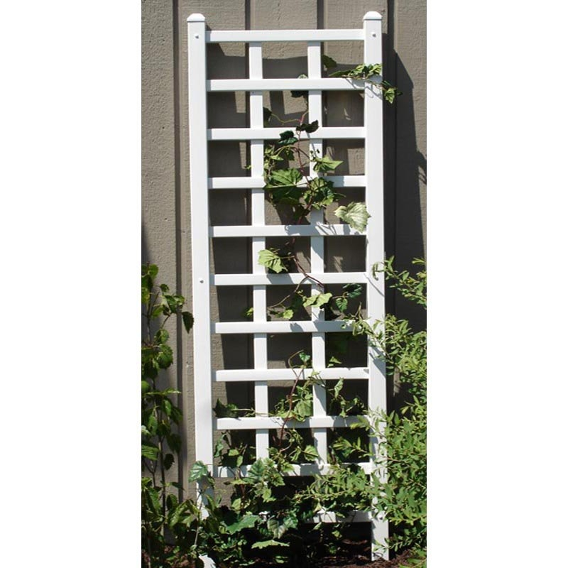 6.25 Ft Wall Trellis in White Vinyl - Made in USA,  DTPW4781485 :  Place the charming 6.25 Ft Wall Trellis in White Vinyl - Made in USA against your fence or your home and watch the vines make their way to the top. Constructed of maintenance-free vinyl, this trellis will never warp, rot, crack, or fade. When it's dirty, just spray it down with the garden hose. Features decorative side posts and 14-inch ground anchors for a secure mounting.
