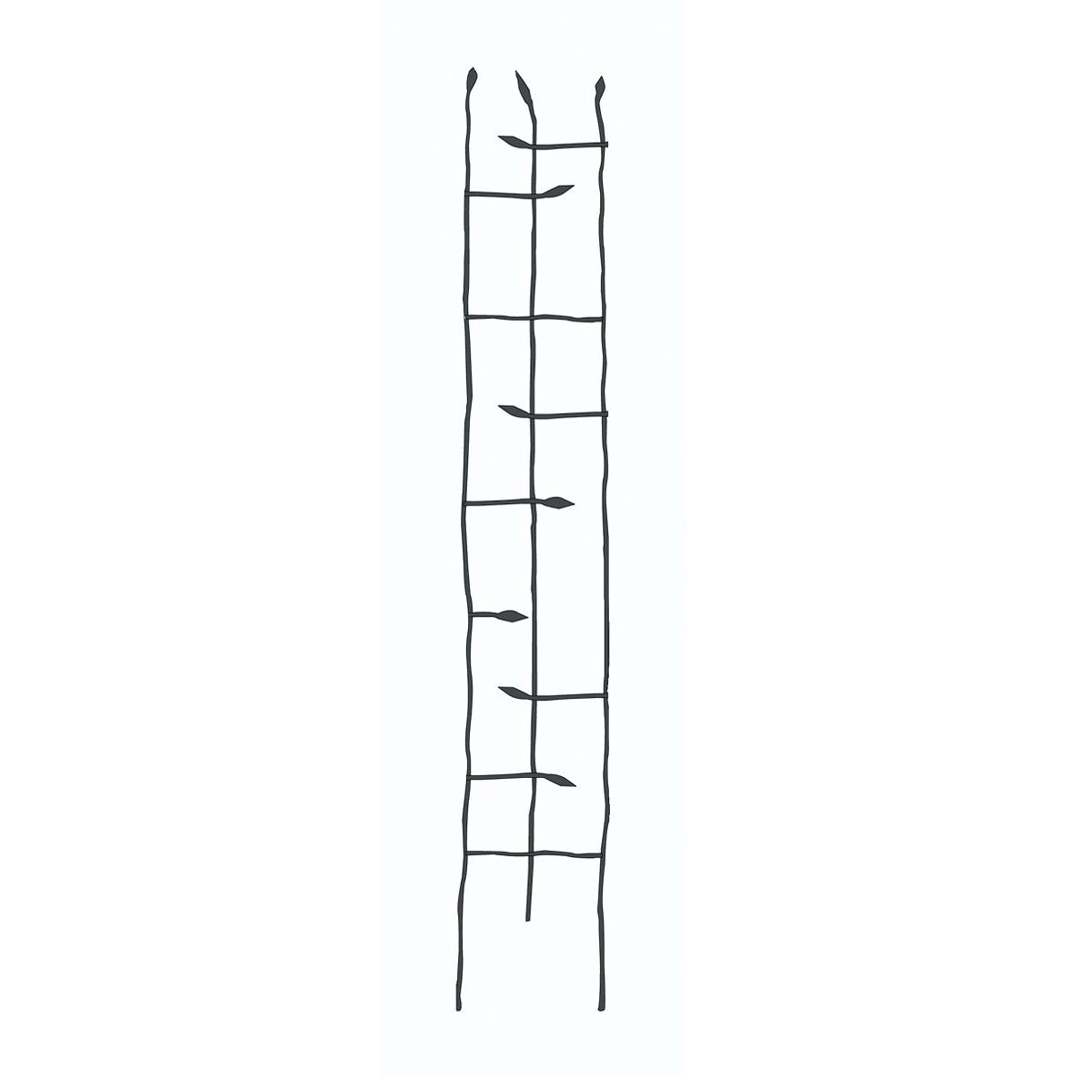 6-Ft High Narrow Garden Trellis in Metal Sprouting Twig Leaf , PFTB358415 :  This 6-Ft High Narrow Garden Trellis in Metal Sprouting Twig Leaf is hand forged. It has three vertical rods that are slightly twisted for a more natural look, with twigs with leaves sprouting inward to form the body of the trellis. Each twig crosses horizontally through the main frame for added support and has the same gnarled look as the vertical rods. Powder coated finish; Made of steel; Measures 10-inches in width by 72-inches in height.