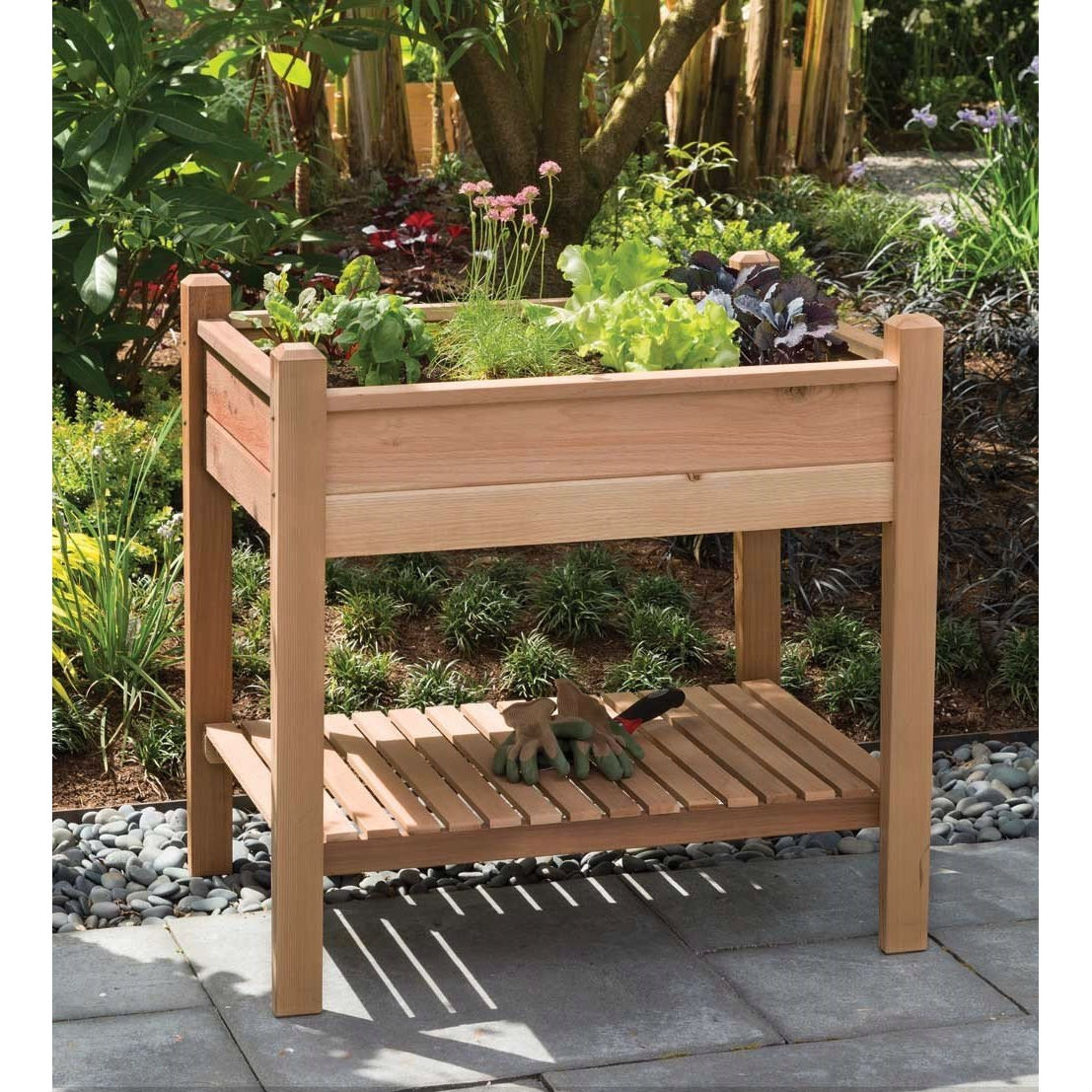"""Elevated Garden Bed Planter Box in Unstained Western Red Cedar, APEG13395 :  This Elevated Garden Bed Planter Box in Unstained Western Red Cedar is a unique planter box designed to allow gardeners to tend to their plants while standing, helping to avoid back strain and improve the patio gardening experience. Both sturdy and decorative, the EZ Plant Garden's four tapered legs gracefully support a solidly constructed bed that is crowned with beveled post tops. Plant it with your favorite her herbs, vegetables or flowers. Includes optional plastic bed liner and easy-to-follow assembly instructions. Tongue and groove cedar bed walls that fit into mortised corner posts for added strength; Naturally rot and pest resistant, may be left unstained to achieve silver patina or finished with your choice of stain; Storage shelf provides space for tools and garden supplies; Assembled dimensions (width x depth x height): 32.75"""" x 24"""" x 32""""; Large 2 cu. ft./15 gal. capacity."""