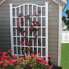 7.5 Ft Garden Trellis in White Vinyl with Arch Top, NEAT1895145 :  The 7.5 Ft Garden Trellis in Whit Vinyl with Arch Top is an elegant solution to any yard space question. Made of high-grade PVC vinyl material that never fades, cracks, splits, or warps, and comes with a 20-year warranty. The traditional designed for floral growth to climb its body. This trellis serves as a regal piece to any yard.