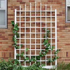 8 Ft Wall Mounted Trellis in White Vinyl - Made in USA, DWMV18925 :  With its classic grid design and stylish arrow-tip detailing, this 8 Ft Wall Mounted Trellis in White Vinyl - Made in USA is a great way to dress your outdoor space in nature's beauty. It's crafted of maintenance-free PVC so is a breeze to clean with just a garden hose, has a white finish that won't crack, fade, split, or warp, and it even includes a 20-year manufacturer's warranty. The ground-mount anchors make set-up easy, and then simply plant climbing flowers, grape vines, or ivy at the base and let nature do its thing.