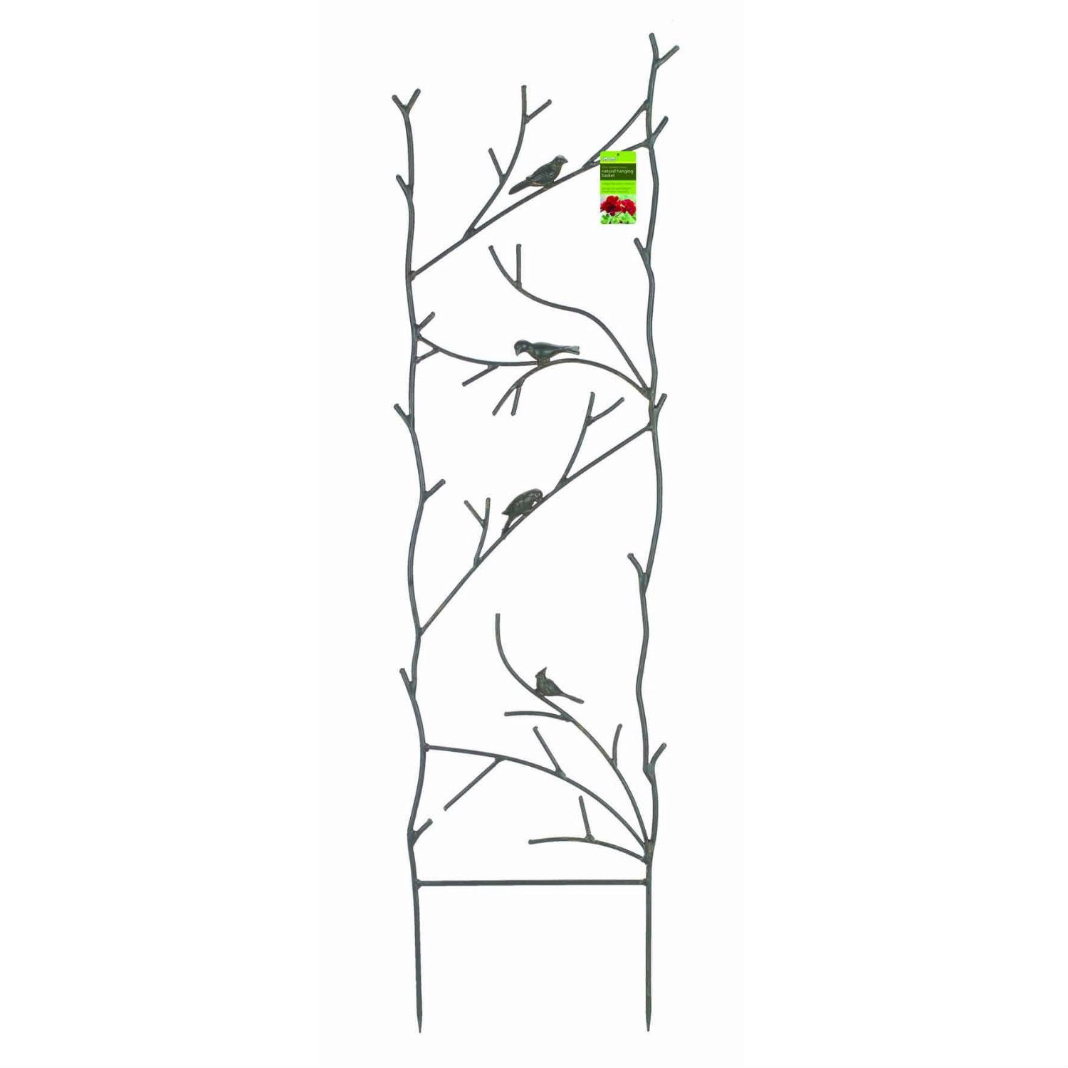 "4-Ft High Garden Trellis with Metal Birds Branch Design in Espresso, GBMT23511 :  This 4-Ft High Garden Trellis with Metal Birds Branch Design in Espresso adds an interesting feature to your garden wall, fence or screen. Delicate looking branches and fun little birds decorate the undulating design. Sturdy steel construction with powder-coated polyester epoxy finish. Espresso color. Perfect for long-stemmed or climbing plants such as roses, sweet peas and clematis. Measures: 48"" tall x 14"" wide."