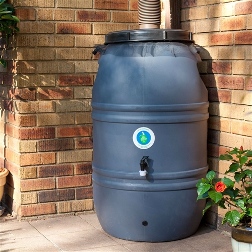 60-Gallon HDPE Food Grade Plastic Rain Barrel with Screw on Cover, GAR519845 :  Rain happens. Rain is free. This 60-Gallon HDPE Food Grade Plastic Rain Barrel with Screw on Cover can fill up with less than .25 inch of rainfall. Rain barrels can go a long way in offsetting your domestic water needs, including gardening, car washing, and pool topping. In turn, the burden on the local water system or your well will diminish and ultimately save you money. Collecting rain water has become as typical as recycling bottles, cans, newspapers, and composting. Link two or three barrels together and you can save up to 180 gallons of precious rain water. Link to other barrels with a .75-inch piece of garden hose (not included); Approximate weight is 20 lbs. UV protected for a long life; Overflow fitting, drain plug, screw on cover included; Optional spigot 4 or 14 inches from ground; Features an insect screen to keep water clear of debris; 1 year limited warranty.