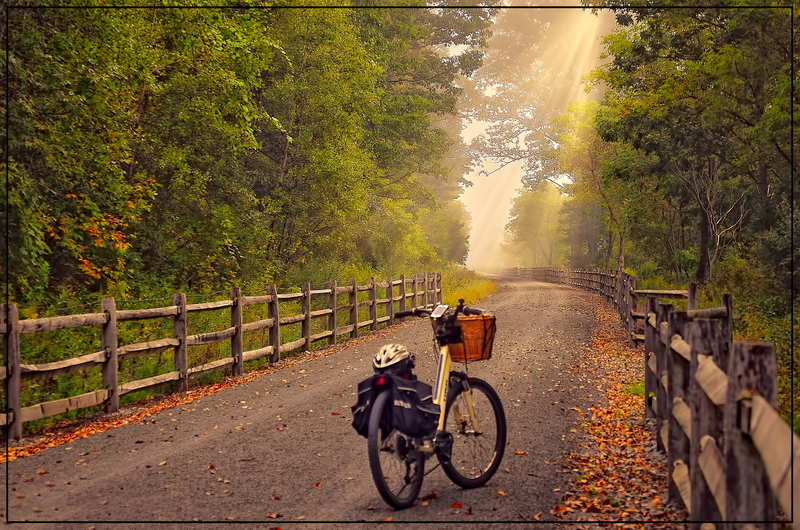 Alone on the Pine Creek Rail Trail