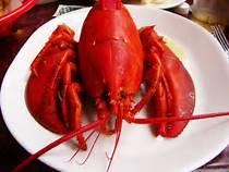 Down East Lobster Bake