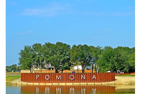 Pomona James Potenza