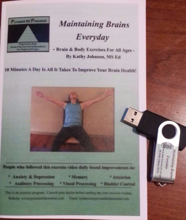 Maintaining Brains Everyday Flashdrive