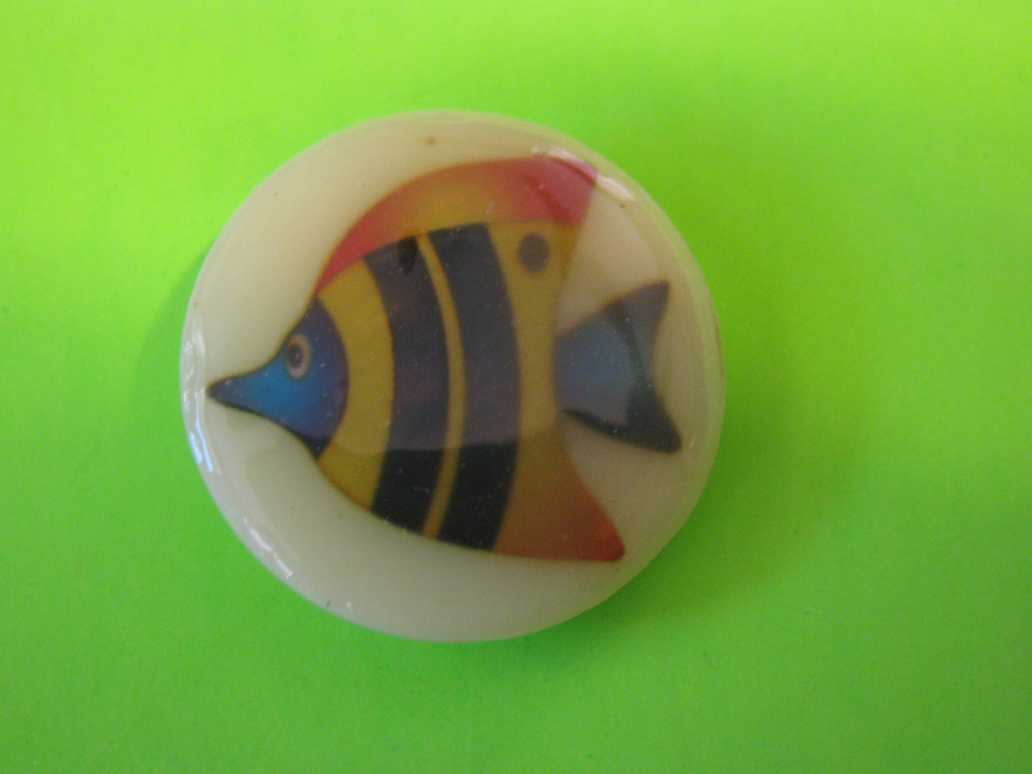 * SOLD * Colorful Angle Fish on Plastic Button with Metal Loop Shank