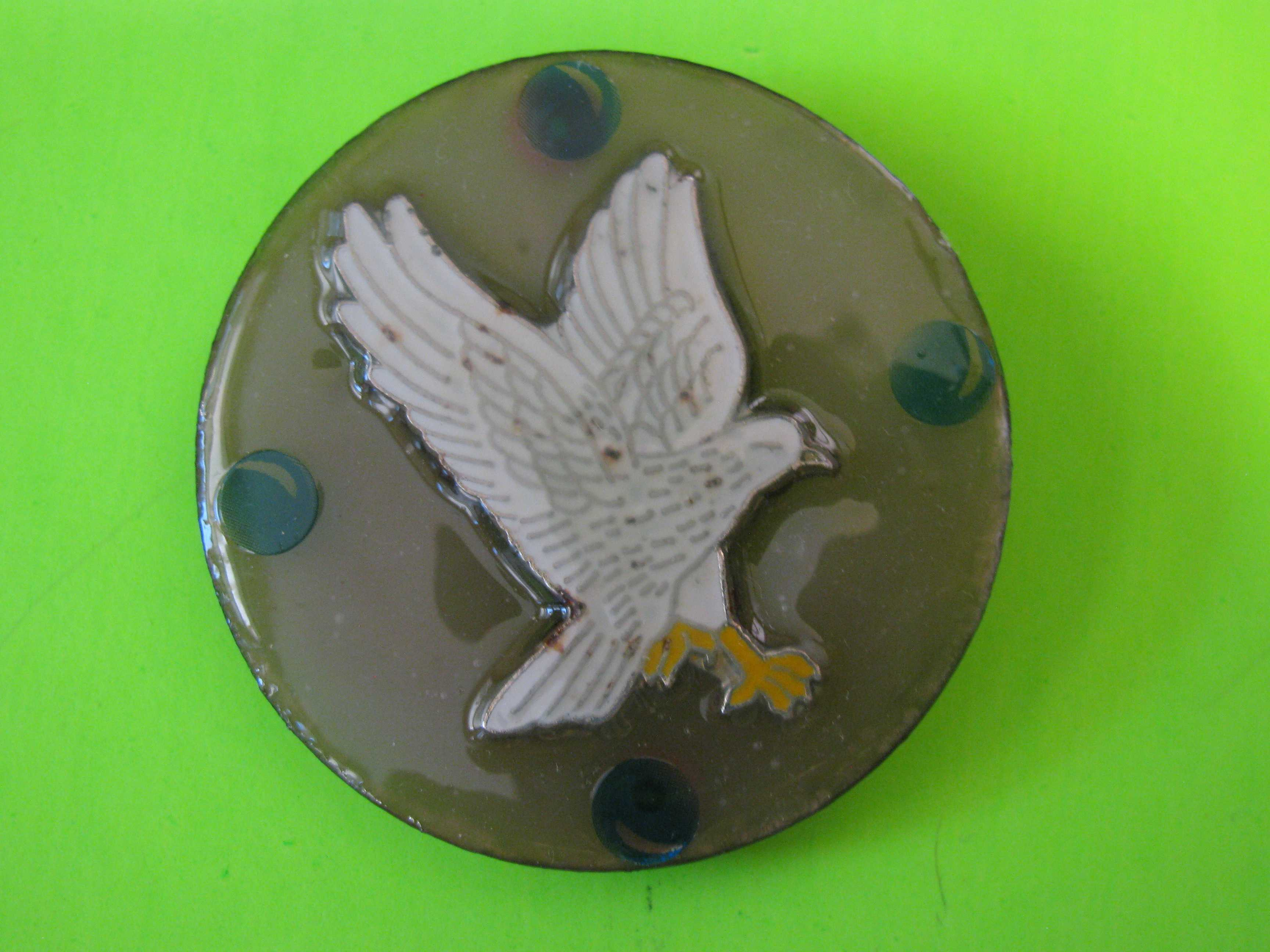 Cloisonné Eagle on Delicate Lucite Button with Metal Claw Shank