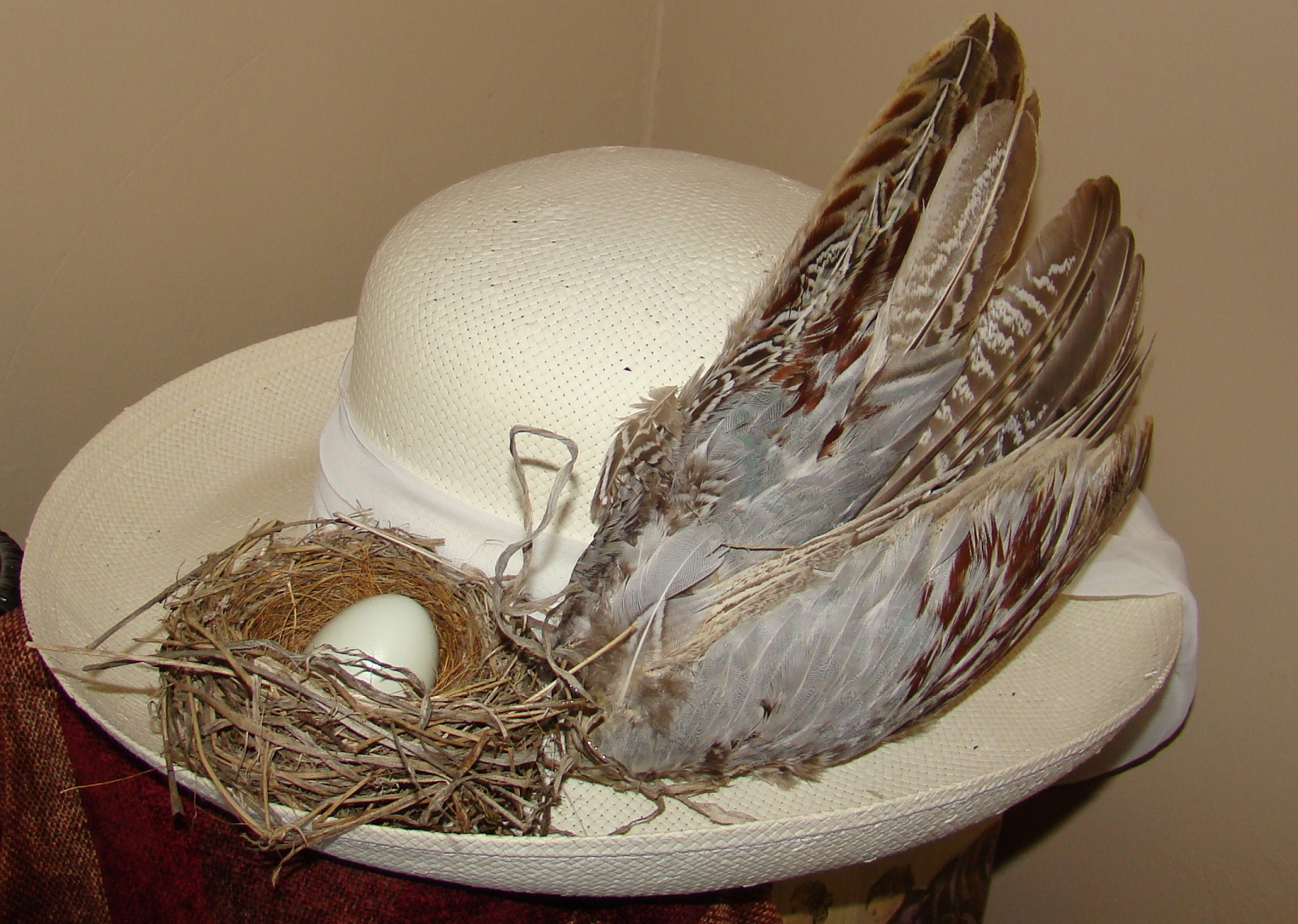 Derby Birdie