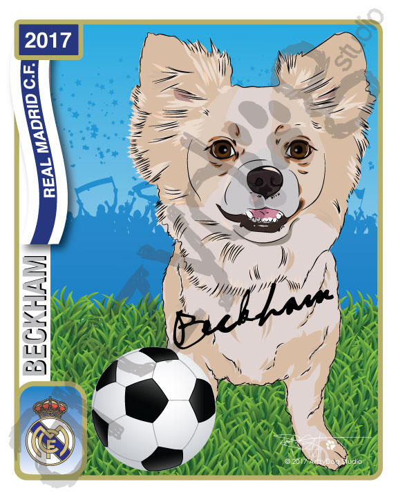 Print: Four-Legged Beckham