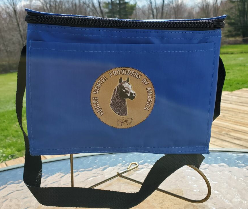 Blue Lunch Bag - 2 Only